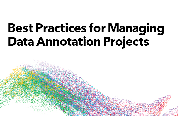Best Practicse for Managing Data Annotation Projects