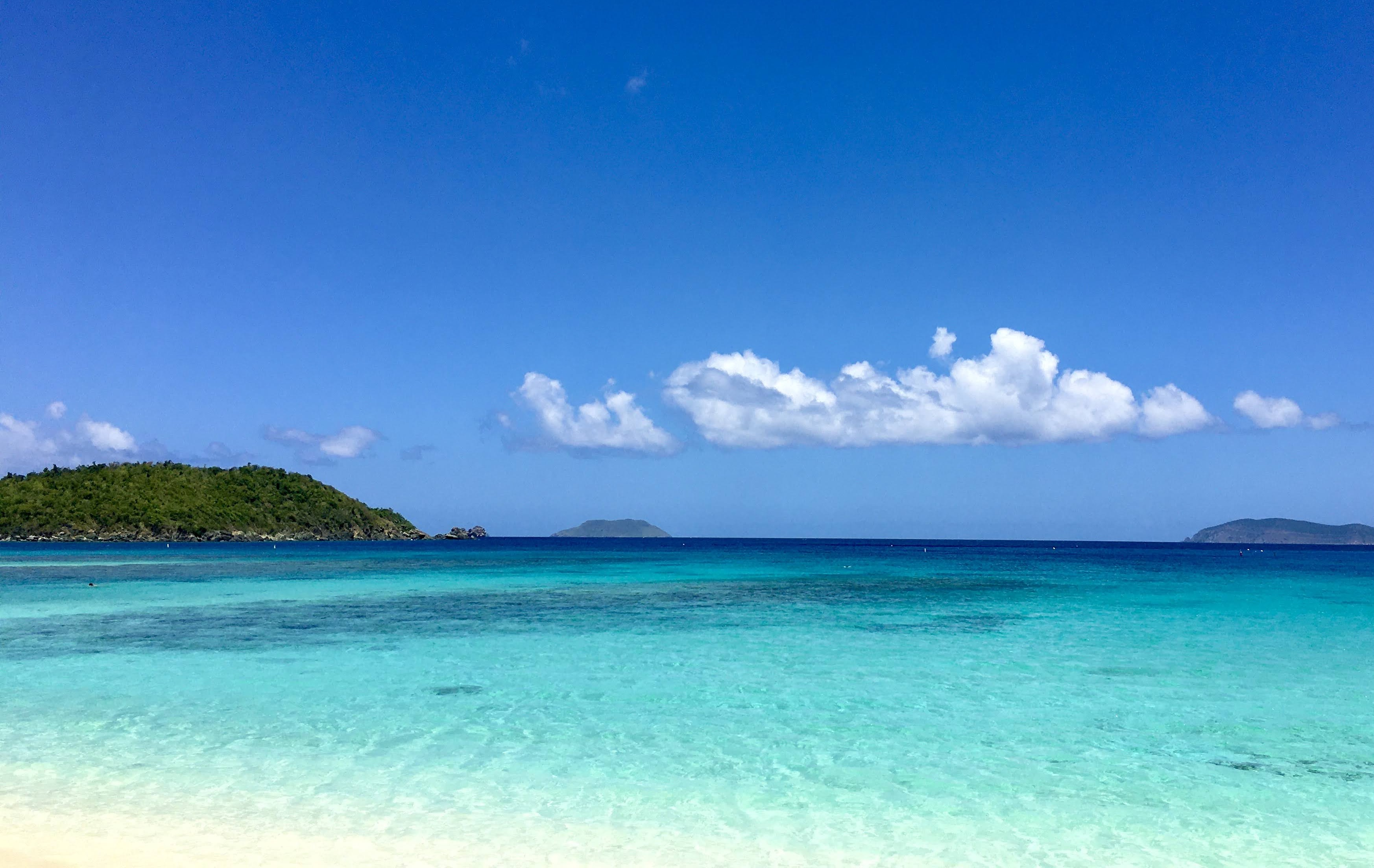 Trunk Bay, St. John VI