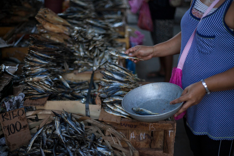 2015-04-22 Artisanal Fisheries