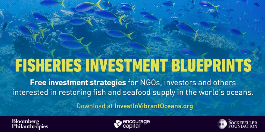 Free investment strategies - Twitter