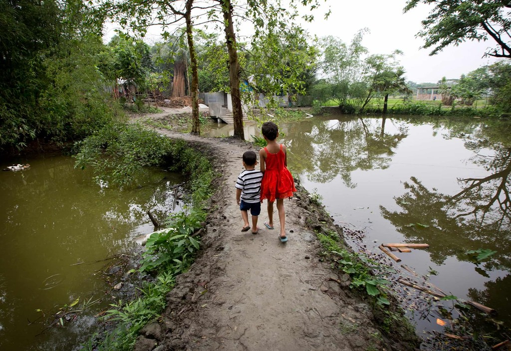 Children in Matlab, Bangladesh walk to their new community daycare centers, part of a Bloomberg supported Johns Hopkins University study to prevent drownings.